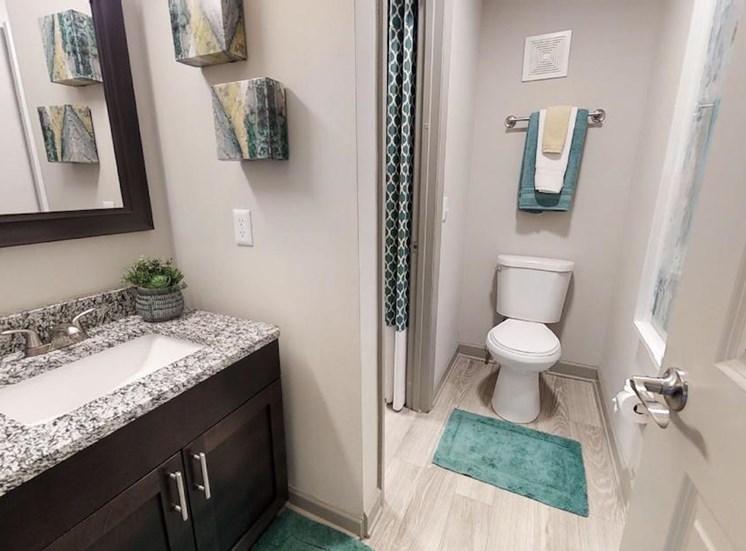 bathroom with granite vanity, mirror, toilet, and tub