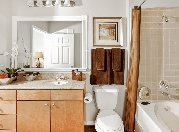Bathroom with mirror and garden size tub