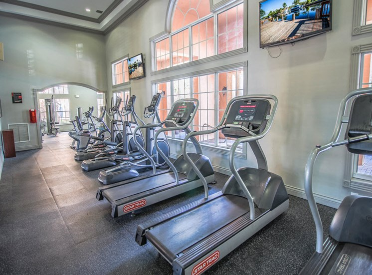 Cardio Equipment with large windows and mounted tv