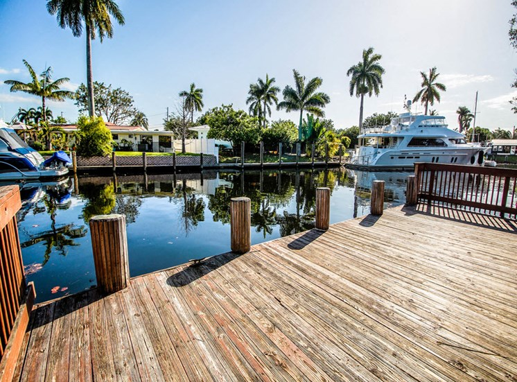 Waterfront Living on dock with yachts on the water and palm trees