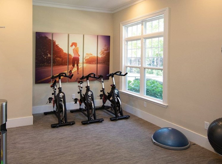Fitness Center with Exercise Equipment next to a window. Stability ball set next to the wall.