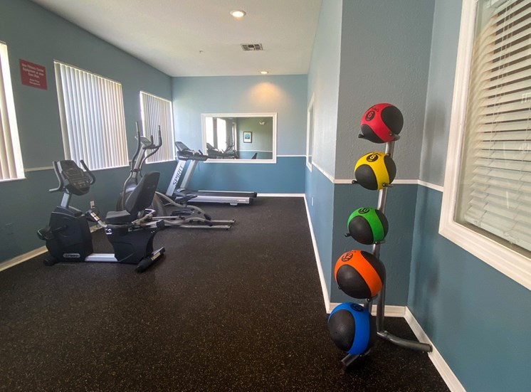 Fitness center with a mirror on the back wall, medicine balls, treadmill, elliptical, and stationary bike