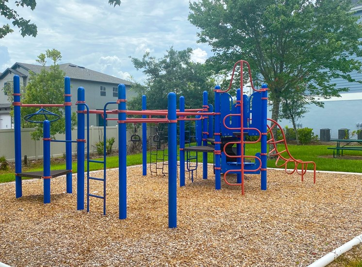 Outdoor playground equipped with slide, later, monkey bars, surrounded by native landscaping