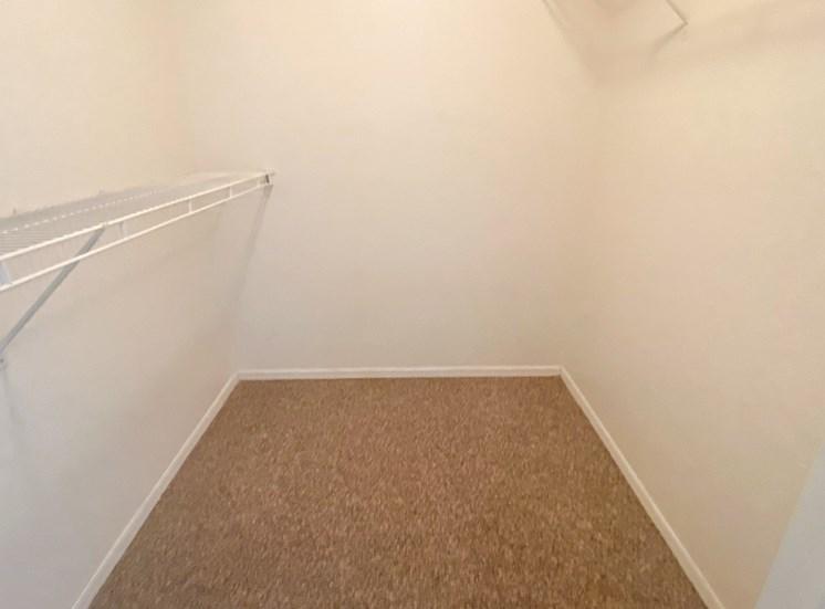 Walk-in closet with carpet flooring
