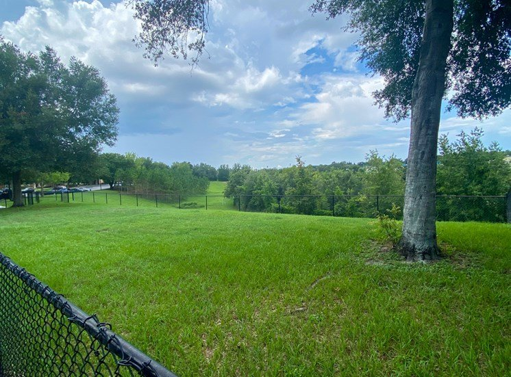 Fenced-in dog park with large grass area and trees in the background