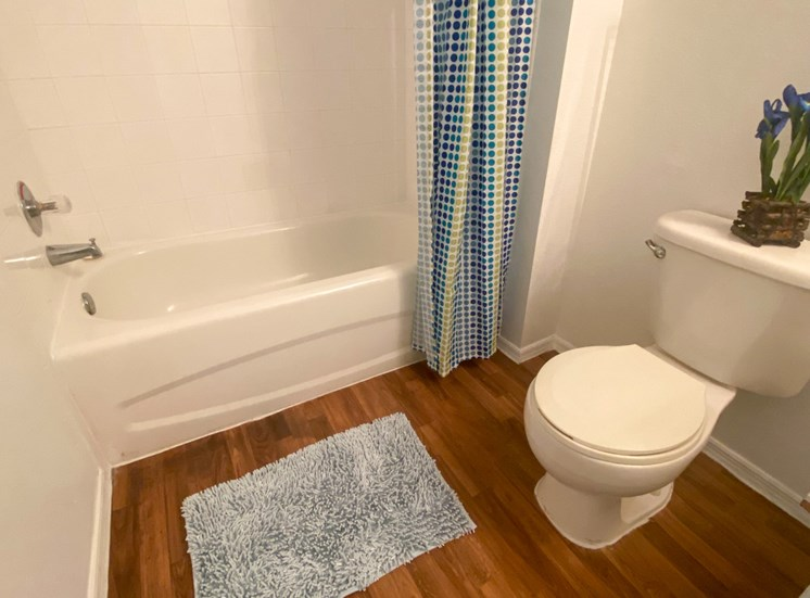 Bathroom with wood floors, toilet, shower tub combo with tile back spash, blue accent plant, rug and shower curtain