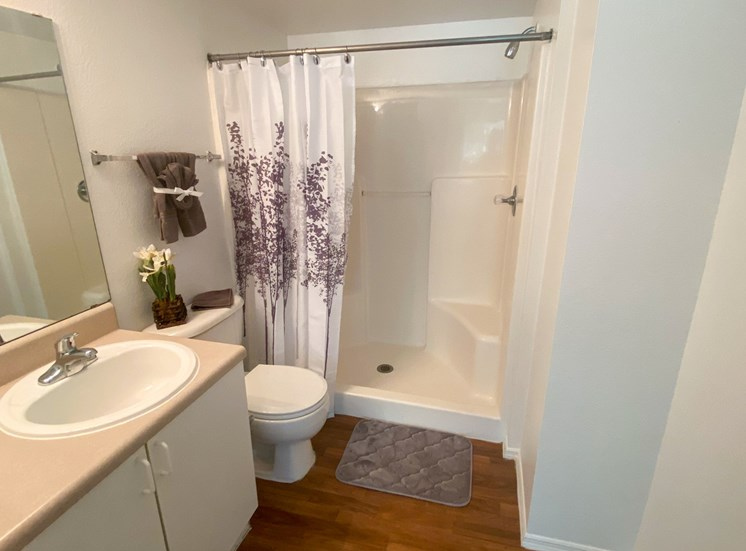 Bathroom with wood floors, toilet, tan vinyl counter top vanity, while cabinets, walk in shower with ledge, and purple accent plant, rug and shower curtain