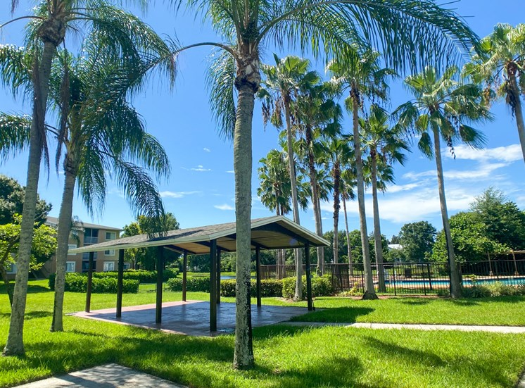 Covered Picnic Area Under Palm Trees in COurtyard