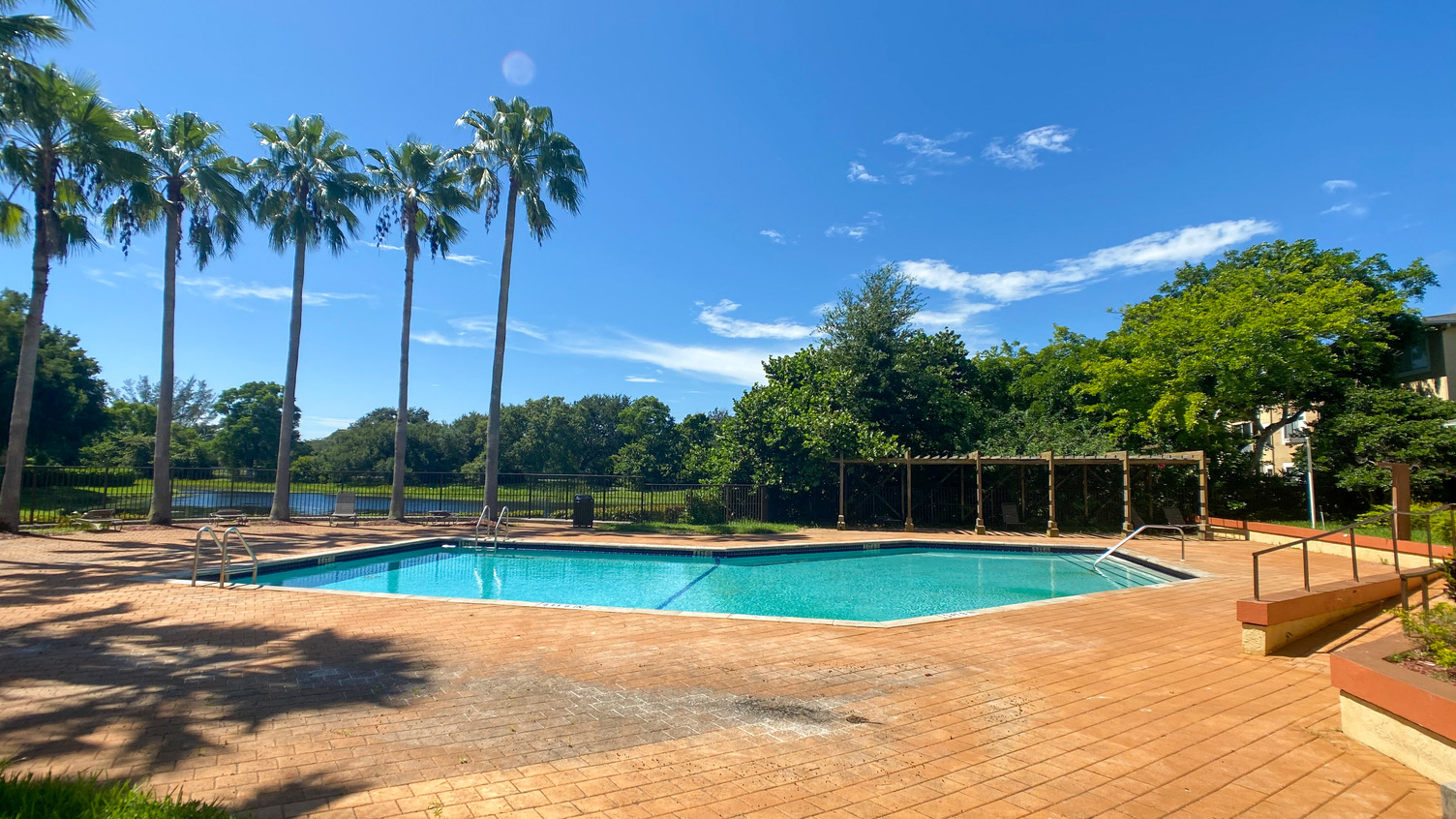 Swimming Pool and Sun Deck With Fence and Palm Trees