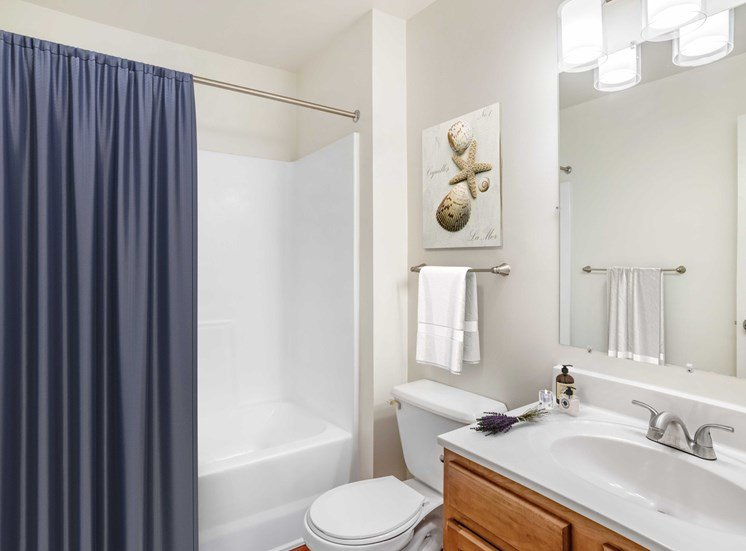 Bathroom with mirror above sink and towel rack. Bath tub with shower curtain.