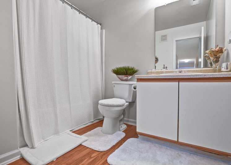 A furnished bathroom with hardwood style flooring, gray walls, a single toilet, white cabinets underneath a single sink, a mounted mirror and a tub/shower combo with a white shower curtain.