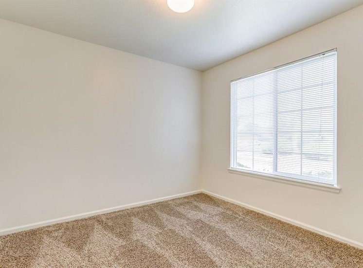 Carpeted Bedroom with Window