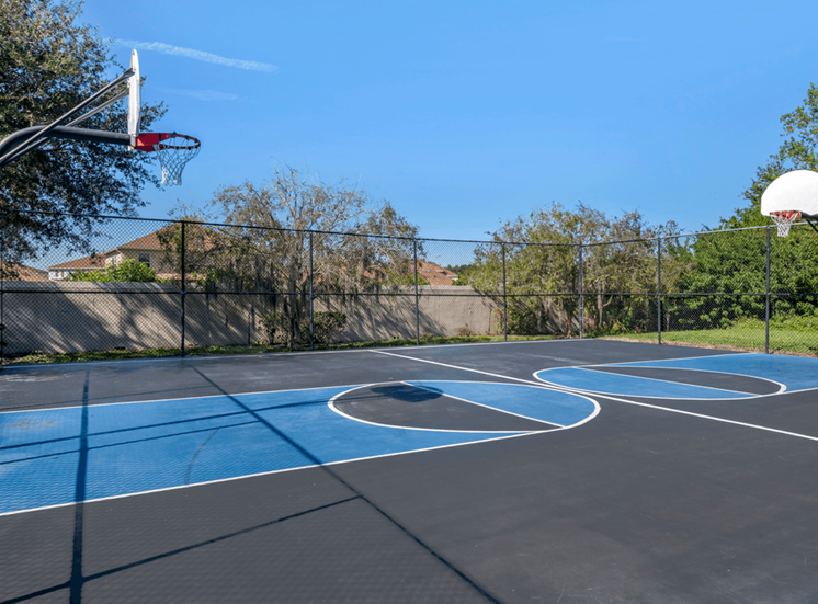 Outdoor basketball court surrounded by native landscaping