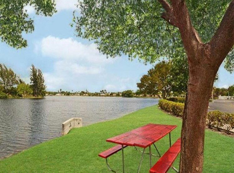 Red Picnic Table Under a Tree Next To Body of Water and Roadway Lined by Shrubs
