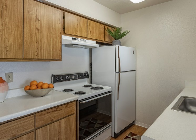 Fully-equipped kitchen with a green decorative plant on top of the fridge