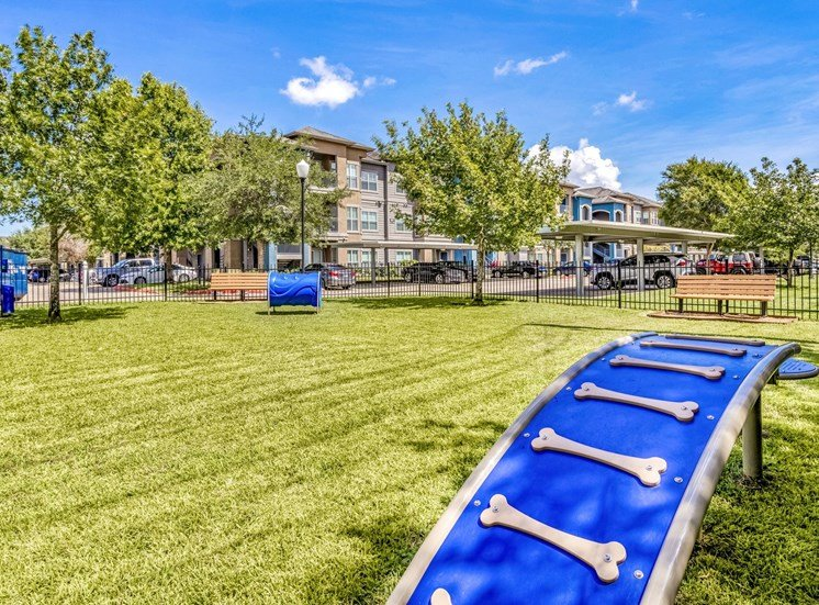 Dog Park with Agility Equipment in grass