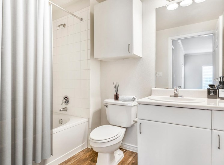 Bathroom with mirror above the sink and a medicine Cabinet above the commode