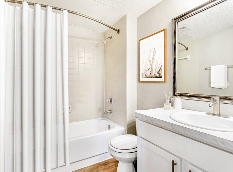 Bathroom with mirror above sink, picture above toilet, and shower curtain installed.