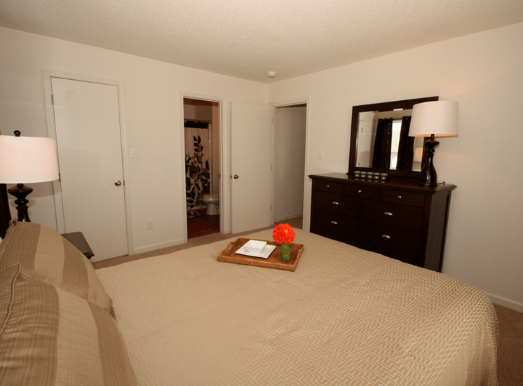 Bedroom with carpet flooring, walk-in closet, dresser with mirror, bed, and nightstand with desk lamp
