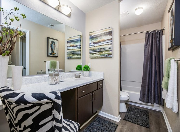 Model Bathroom Brown Cabinets and White Counters with Decorations Rugs Zebra Print Chair and Dark Shower Curtain
