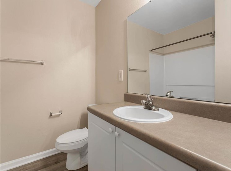 Bathroom Vanity with Brown Counters Next to Toilet