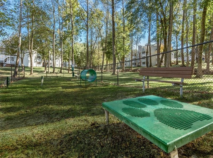 Fenced in Dog Park with Agility Equipment  Shaded by Tall Trees