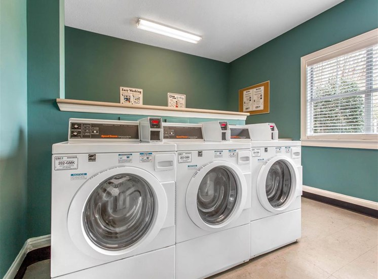 Clothes Care Center with Washing Machines and Blue Walls