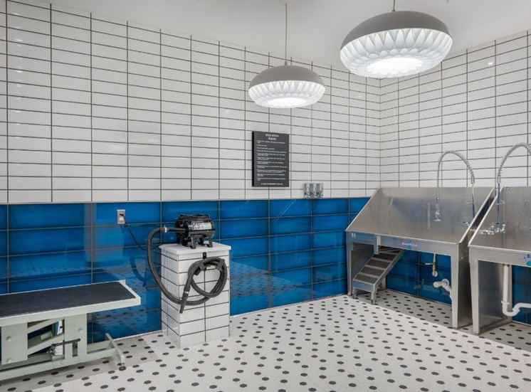 Tiled Pet Grooming Area with Two Metal Sinks and Spaces to For Drying