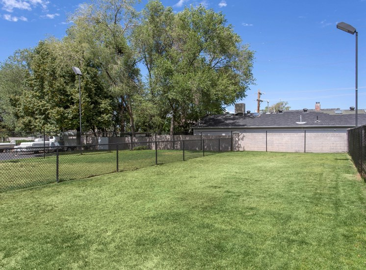 Fenced in Grassy Dog Park Next to Trees
