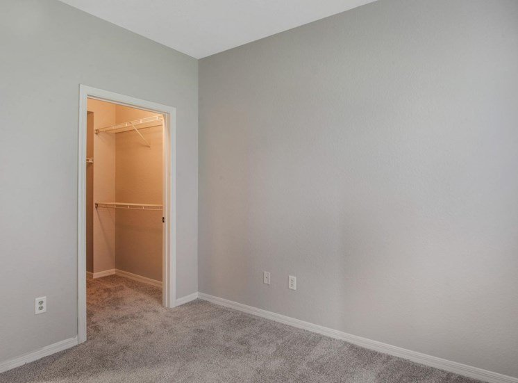 Carpeted Bedroom with Walk in Closet with Built in Shelves