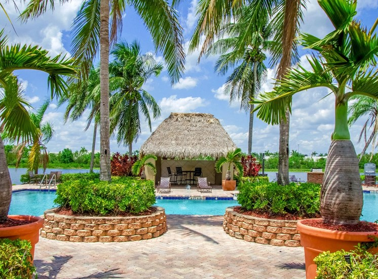 Resort Style Swimming Pool with Palm Trees