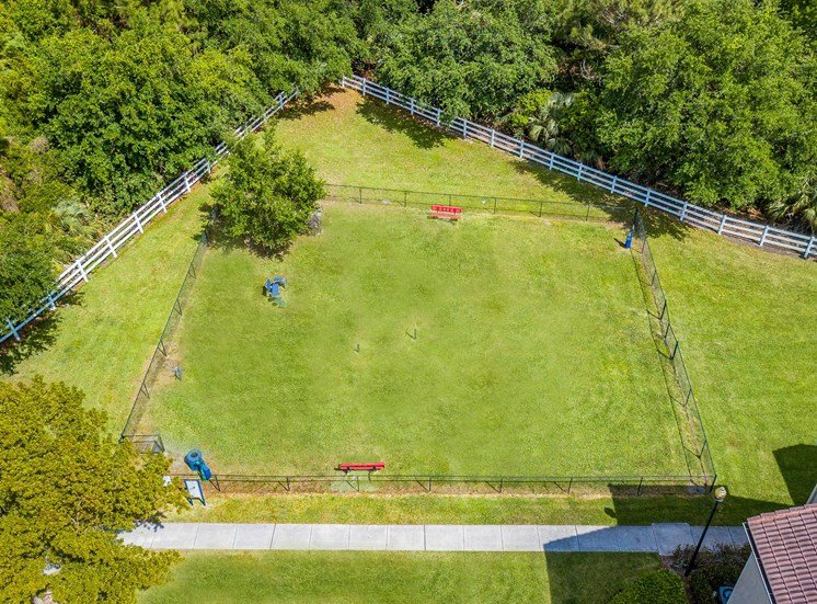 Aerial View over Fenced in Dog Park with Tree, Benches, and Nearby treeline
