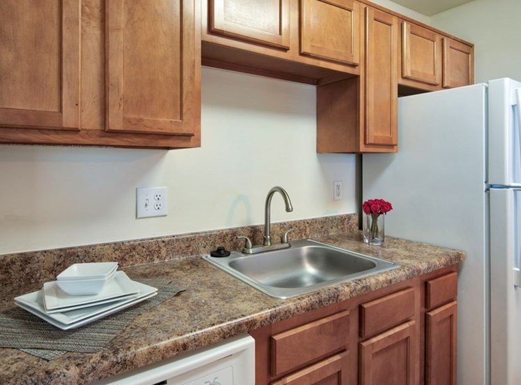 Kitchen sink with dishwasher and refrigerator. Cabinets above all appliances.