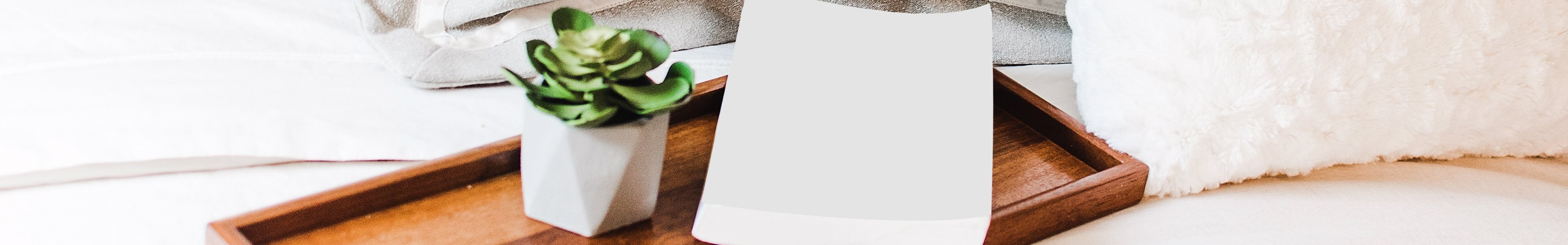 Stock Image of Wooden Serving Tray with Small Succulent in Planter Next to Book on Bed with White Sheets and Grey and White Pillows