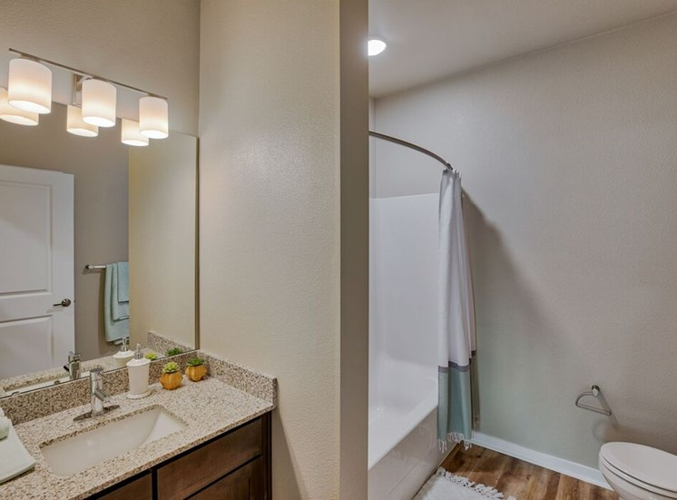 Bathroom with vanity and shower