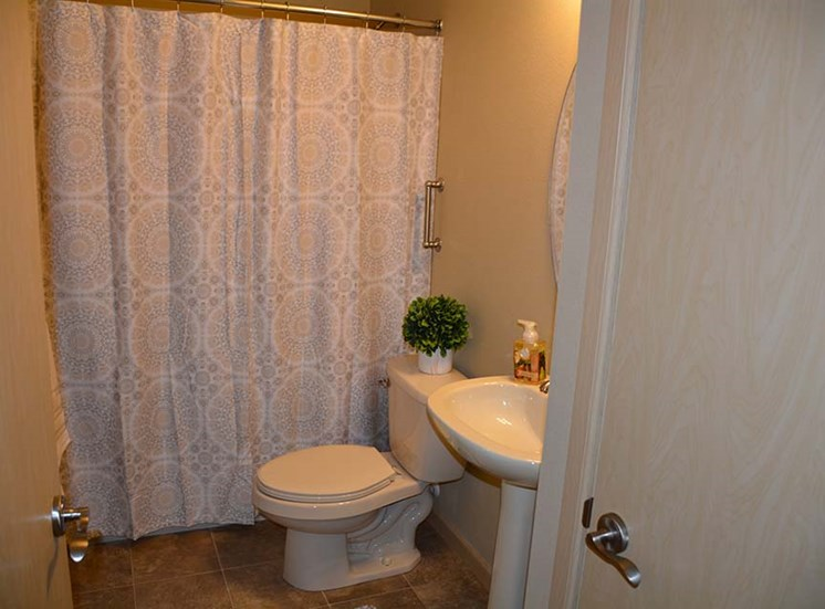 Bathroom shower and vanity