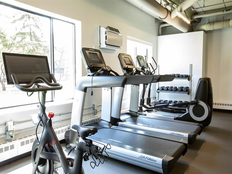 treadmill and other fitness options