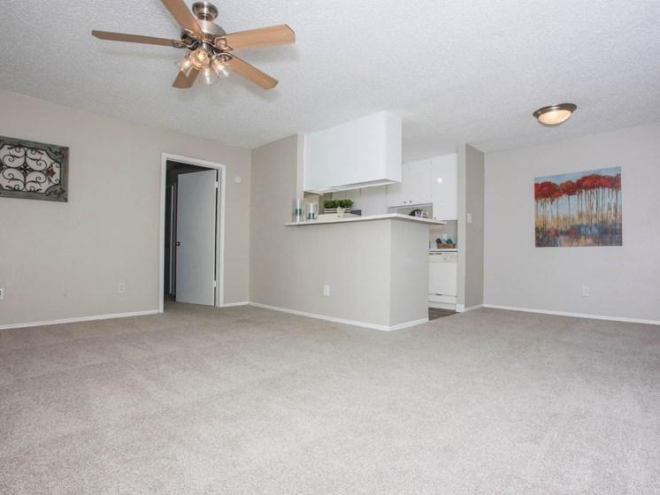 carpet-living room