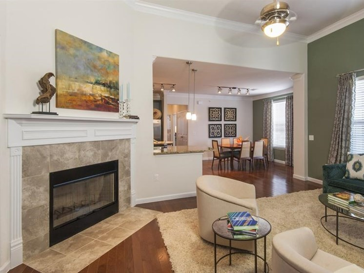 Fireplaces Available at Parc Woodland, Conroe, TX, 77384