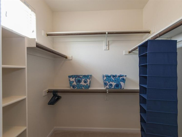 Expansive Walk-in Closets at Parc Woodland, Conroe, TX