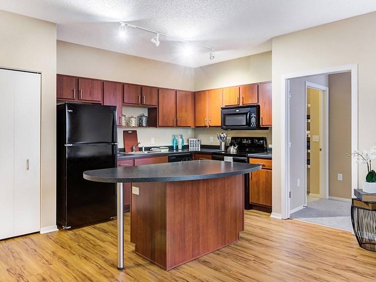 fully functioning kitchen at Uptown Lake Apartments, Minnesota, 55408