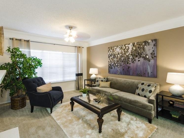 Lush Wall-to-Wall Carpeting