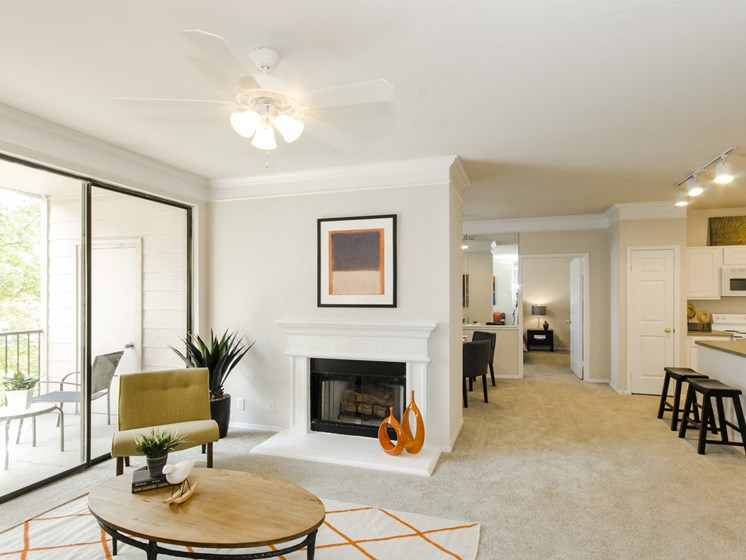 Spacious Living Rooms With Attached Balcony