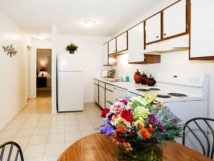 Apartment Kitchen with Appliances