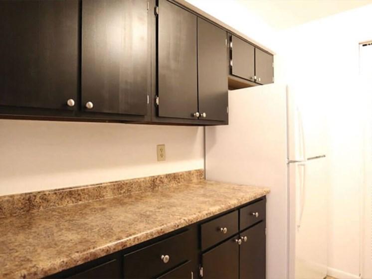 apartment kitchen in Lima Ohio