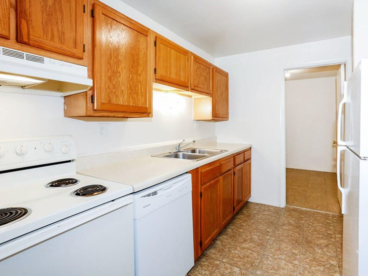 Apartment Kitchen with Double Sink