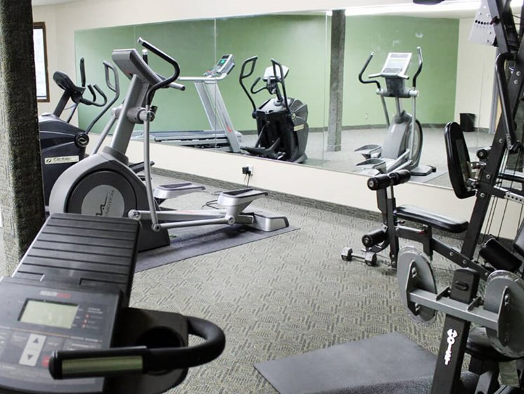 fitness center at Stone Grove Apartments