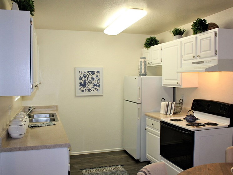 Fully-Equipped apartment Kitchen