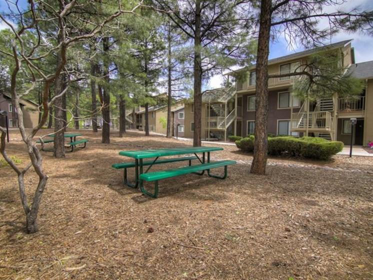 Outdoor Grills and Picnic Gazebo at Woodlands Village Apartments, Flagstaff, AZ,86001