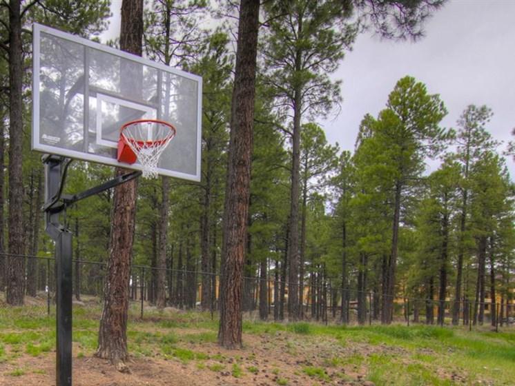 Basketball Court at Woodlands Village Apartments, Flagstaff, AZ,86001